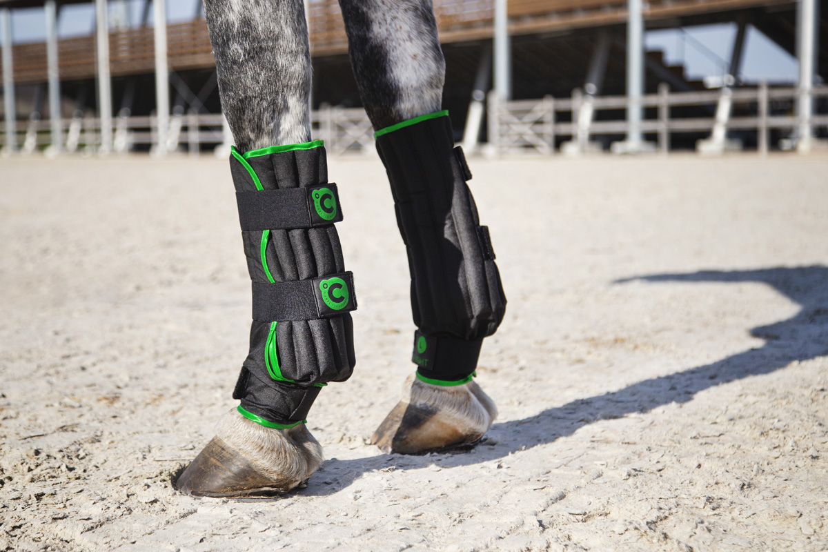 O´Cool high quality products for horses